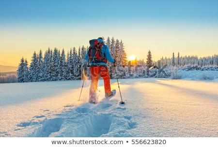 Stock photo: snow shoes