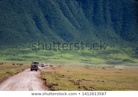 Cratera paisagem Tanzânia montanha África turismo Foto stock © ajlber