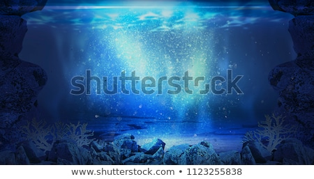 Depth of the ocean stock photo © SVitekD