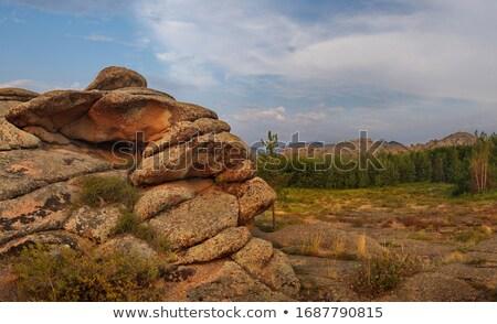 Oriente médio escultura imagem ídolo árvores Foto stock © jrstock