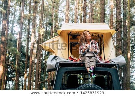 kilátás · bent · sátor · ki · erdő · tavasz - stock fotó © diego_cervo
