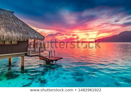 日没 · ビーチ · 島 · フランス語 · ポリネシア - ストックフォト © danielbarquero