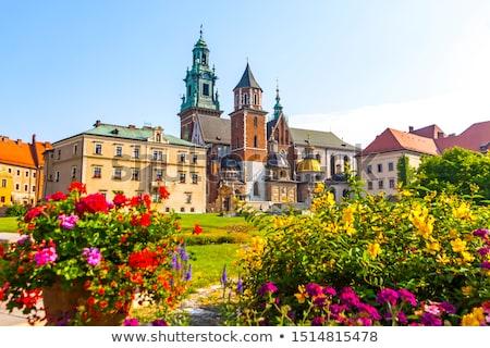 Castelo complexo cracóvia Polônia céu cidade Foto stock © meinzahn