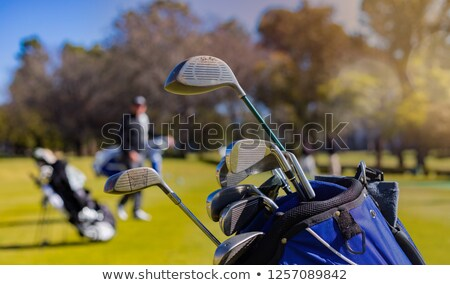 Fairway wood Stock photo © vanessavr