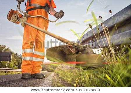 werknemer · borstel · bos · vroeg · helm - stockfoto © olandsfokus