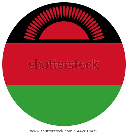 Round button with flag of malawi Stock photo © MikhailMishchenko