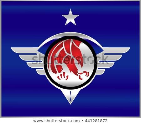 Eagle. Eagle patriot on the shiny metallic winged shield. Stock photo © HunterX