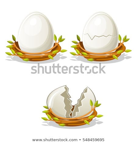 three eggs in the bird nest stock photo © bluering