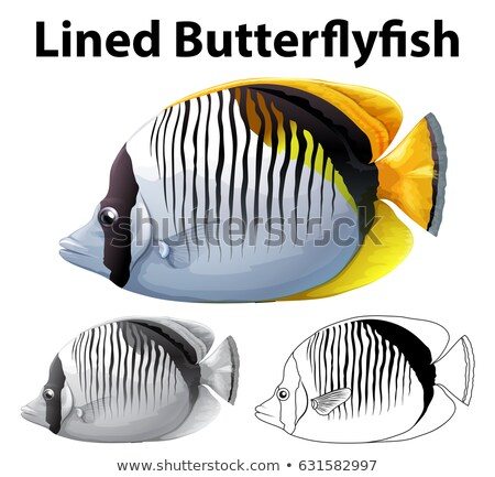 Drafting character for lined butterfly fish Stock photo © bluering