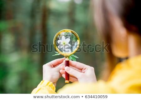 девушки глядя увеличительное стекло лес ребенка Сток-фото © wavebreak_media