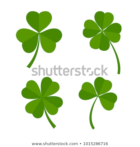 Set of green leaves of clover. Shamrock and quatrefoil Stock photo © orensila