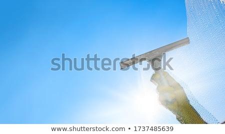 desenho · animado · limpador · de · janelas · handyman - foto stock © krisdog