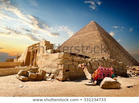 Camelo ruínas entrada céu paisagem deserto Foto stock © Givaga