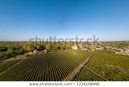 Voedsel wijn zonsondergang landschap vruchten Stockfoto © FreeProd
