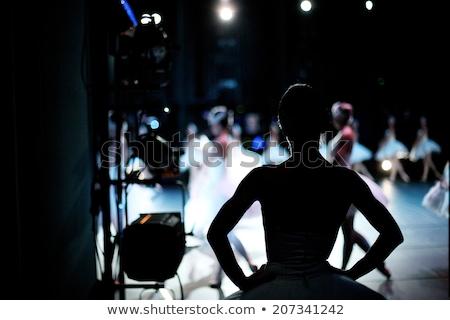 çocuklar · sahne · örnek · kostüm · perde · arka · plan - stok fotoğraf © bluering
