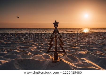 Stok fotoğraf: Ahşap · noel · ağacı · plaj · kumu · dekore · edilmiş · kırmızı · plaj