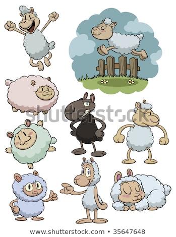 Arrabbiato cartoon pecore illustrazione guardando Foto d'archivio © cthoman
