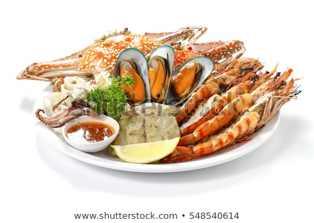 set of seafood on white background stock photo © bluering