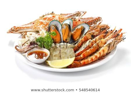 Set of seafood on white background Stock photo © bluering