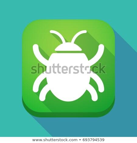 Illusztráció tér gomb rovar vektor internet Stock fotó © kyryloff