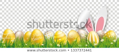 ostern hare ears golden easter eggs transparent header stock photo © limbi007