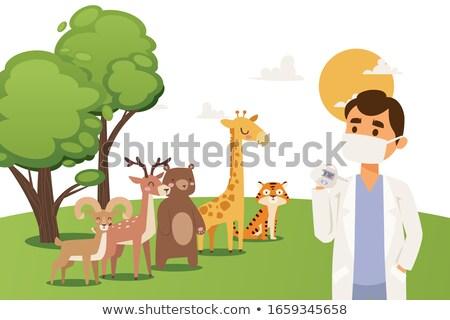 Veteriner zürafa hayvanat bahçesi örnek bebek doğa Stok fotoğraf © colematt