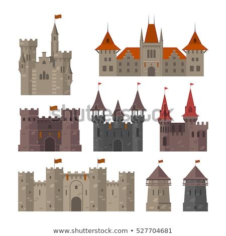 Ingesteld middeleeuwse kasteel illustratie gebouw ontwerp Stockfoto © bluering