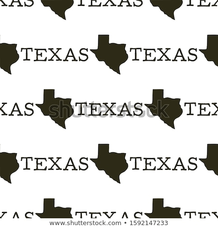 Texas modèle silhouette texte vintage Photo stock © JeksonGraphics