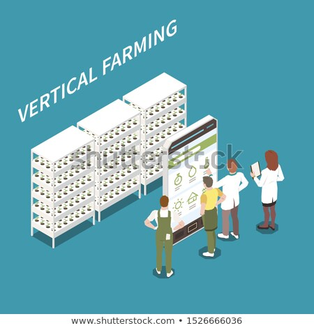 Vector isometric modern greenhouse illustration Stock photo © tele52