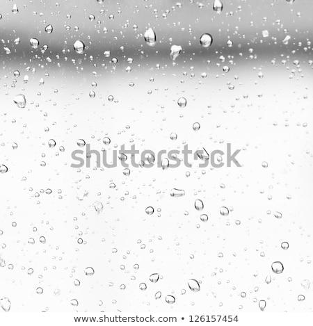 Cenny cool wody przepiękny młodych brunetka Zdjęcia stock © lithian