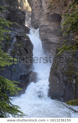 Waterfall near Johnston Canyon Alberta Stock photo © pictureguy