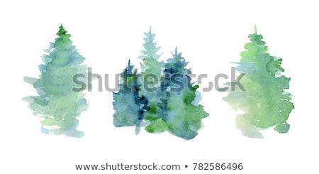 カラフル ツリー ベクトル ポスター 木材 葉 ストックフォト © krabata