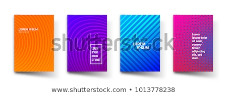 3d colorful folders stock photo © 4designersart