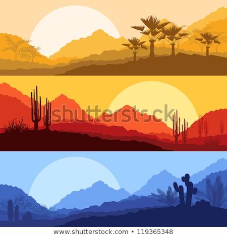 美しい · 山 · 砂漠 · 風景 · 背景 · 夏 - ストックフォト © meinzahn