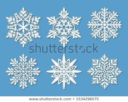 vector · vintage · gedetailleerd · sneeuwvlok · zeshoek - stockfoto © alexmakarova