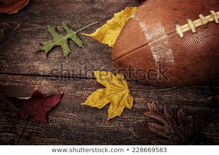 Stock photo: Autumn Football