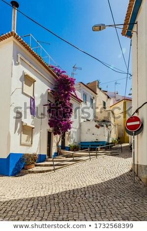 Rue pittoresque village maison art Photo stock © Kirill_M