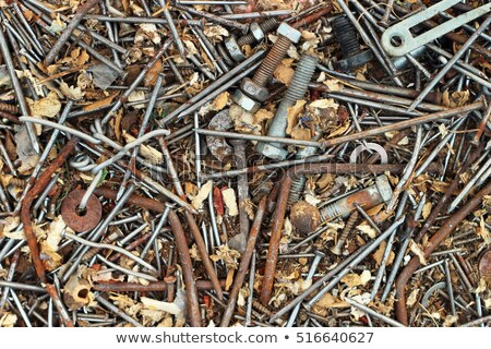 rusty nail and chain Stock photo © ozaiachin