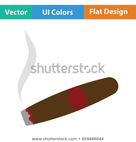Szivar izolált fehér levél füst cigaretta Stock fotó © ozaiachin
