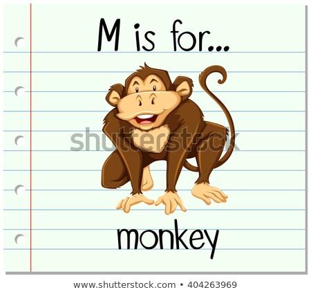 majom · vágási · körvonal · rajz · aranyos · vektor · illusztráció - stock fotó © bluering