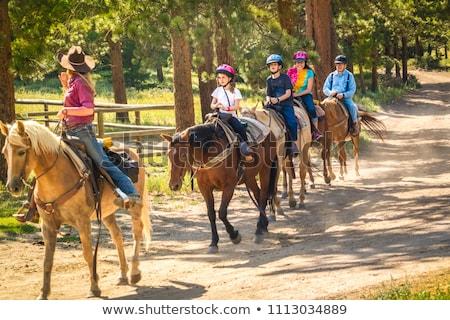 женщину верховая езда лошади природы модель фермы Сток-фото © bokica