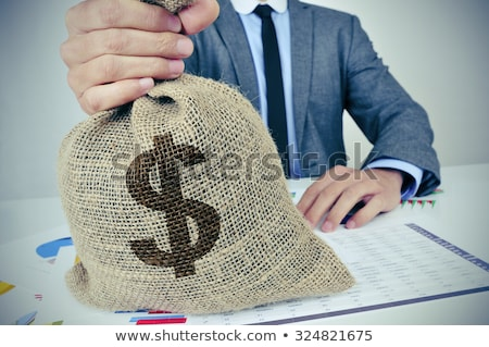young caucasian businessman holding a money bag stock photo © rastudio