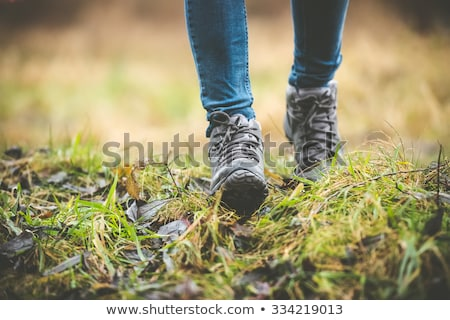 Feet of woman and man hiker hiking in forest Stock photo © wavebreak_media