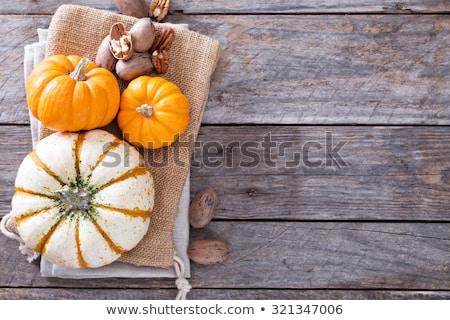Green and orange Pumpkin and ingredients for tasty vegetarian co Stock photo © artsvitlyna