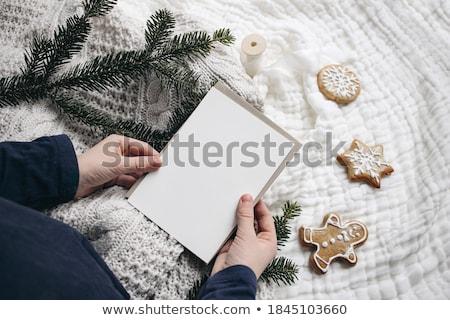 christmas · kalendarza · 3d · ilustracji · dzień · wakacje · harmonogram - zdjęcia stock © karandaev
