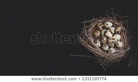 Metal basket with colourful Easter quail eggs stock foto © Melnyk