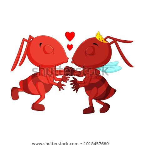 Formigas amor ilustração casal inseto celebração Foto stock © adrenalina