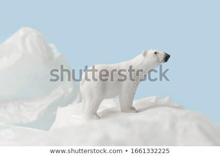 白 クマ プラスチック ごみ 水 ベクトル ストックフォト © leedsn