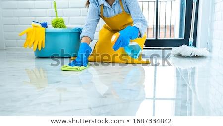 hizmetçi · gülümseyen · kadın · yalıtılmış · beyaz · ev - stok fotoğraf © Kurhan