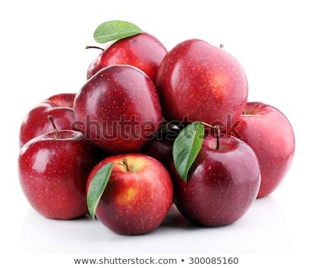 appels · sinaasappelen · tolerantie · vriendschap · symbool · twee - stockfoto © t3mujin